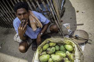 Mango seller resting