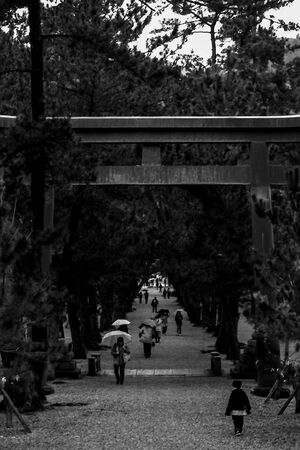 Torii standing in approach way