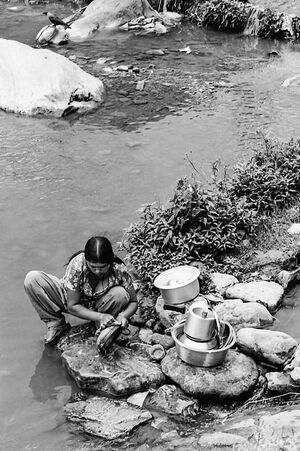 Woman washing dishes with river water