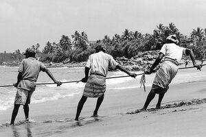 Fishermen pulling rope