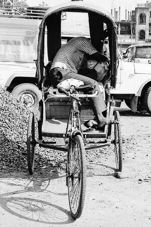 Rickshaw wallah sleeping