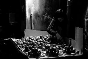 Man selling apples