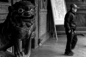 Guardian dog in Baoan Temple