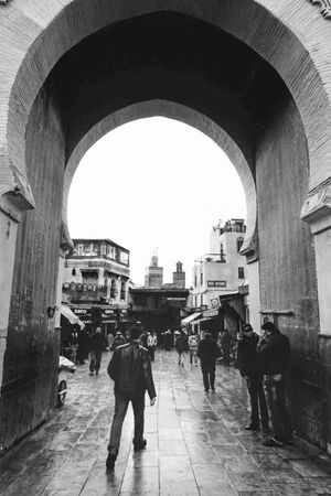 Magnificent gate of old quarter of Fez