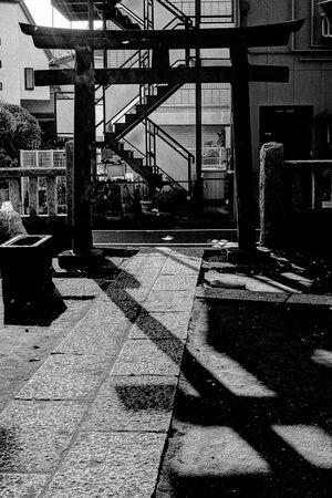 Torii in Tohkamori Inari