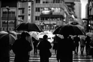 浜町を歩いていた沢山の傘