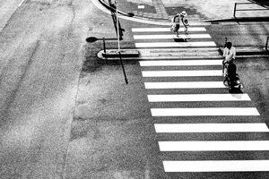 Family on pedestrian crossing