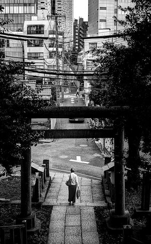 Woman passing through Torii