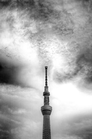 Skytree stretching up