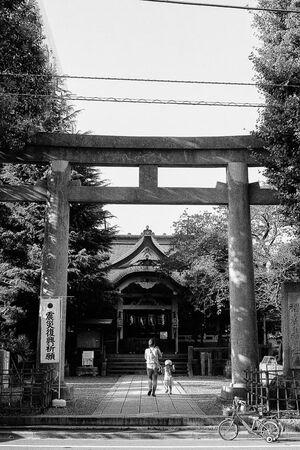 Torii of Sarue Jinja shrine