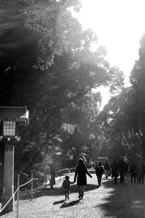 明治神宮の参道を歩く親子