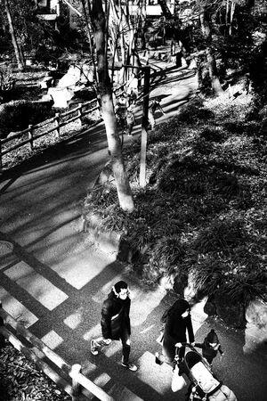 公園の小径を歩く家族連れ