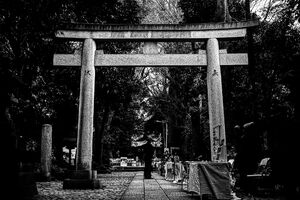 Torii standing in dimness