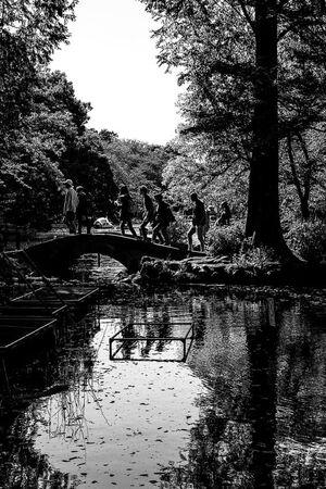 小さな石橋の上のシルエット