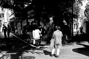 Three-forked road in Yanaka