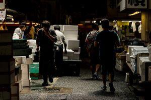 Passage in Tsukiji market