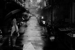 路面の濡れた道