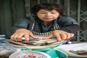 Woman weighing fishes with a weighing machine