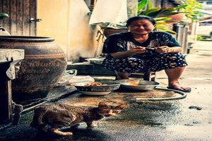 路地にいた猫と女性