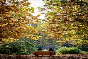 Two people sitting on a bench in Shinjuku Gyoen