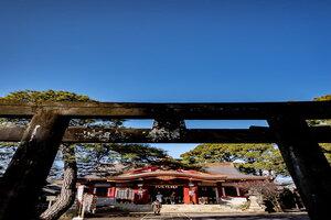 鳥居と品川神社の拝殿
