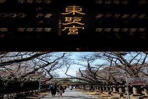 上野東照宮の水舎門