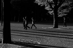 People walking among trees