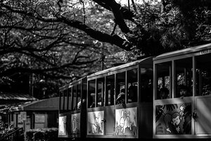公園を走る子供用の列車
