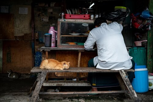 Man eating alongside a cat