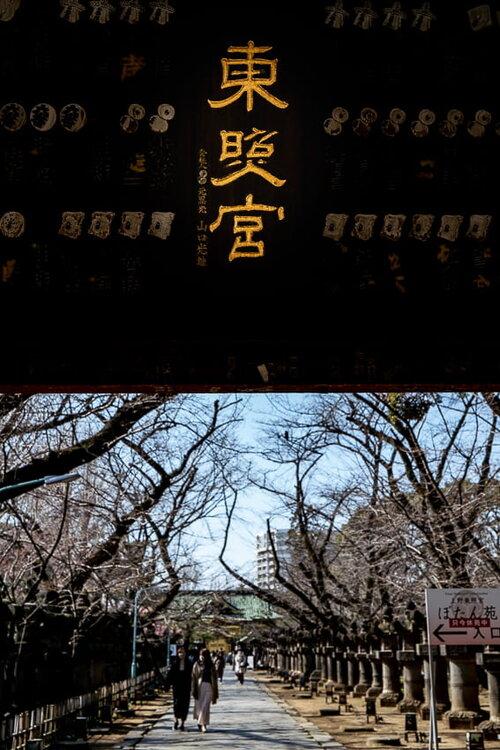 MIzuya-mon Gate in Ueno Toshogu Shrine
