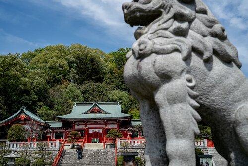 Shrine Hall and guardian dog of Ashikaga Orihime Shrine