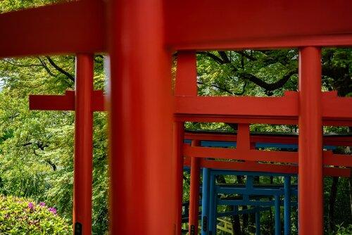 Red Torii Gate and Blue Torii Gate