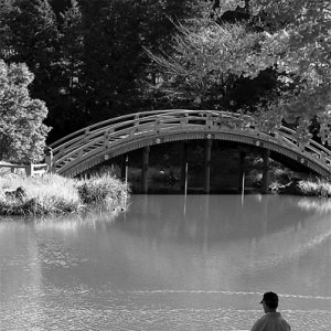 称名寺の池の畔でキャンパスと向かい合う日曜画家