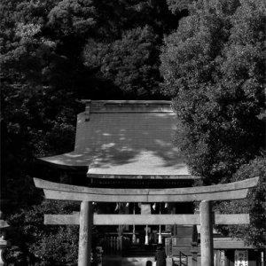 瀬戸神社の鳥居をくぐり抜けていk人影