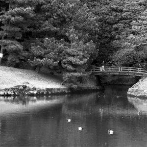 浜離宮の小さな橋