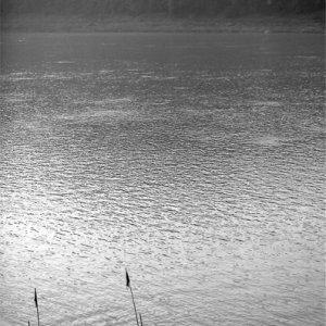 メコン川の岸に近づいてきたボート