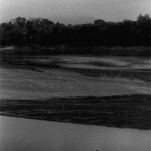 ボートの端に立つ漁師