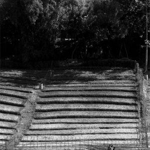 ナムカーン川沿いを歩く人影