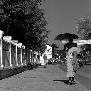 Buddhist monk walking with black sunshade