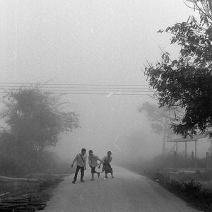 Three kids in morning fog