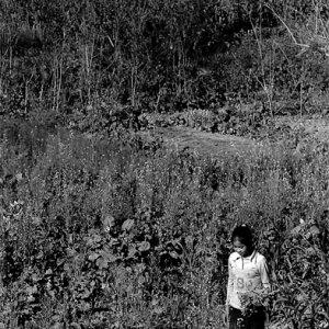 畑の中に立つ女の子