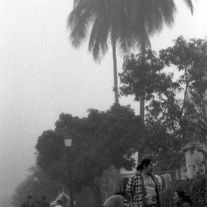 朝霧の中で立ち話する女性