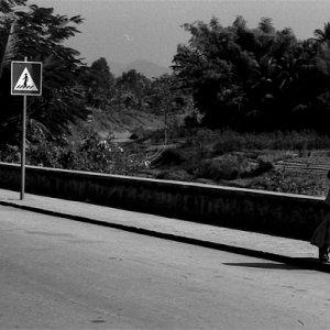 ひとりでとぼとぼ歩く若い僧侶