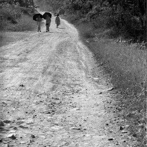 日傘を差して砂利道を歩く三人の僧侶