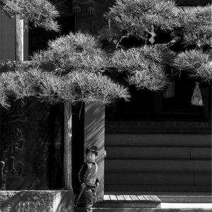 Boy playing in Shibamata Taishakuten