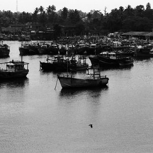 Fishing boats in Beruwala harbor