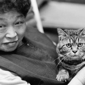 膝の上に猫を載せて寛ぐ女性