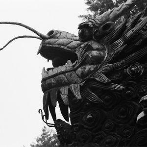 豫園の塀の上にいた龍
