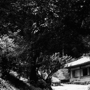 良洞民俗村の伝統的な家屋
