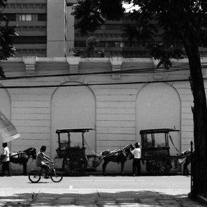 道端で客待ちをしている馬車